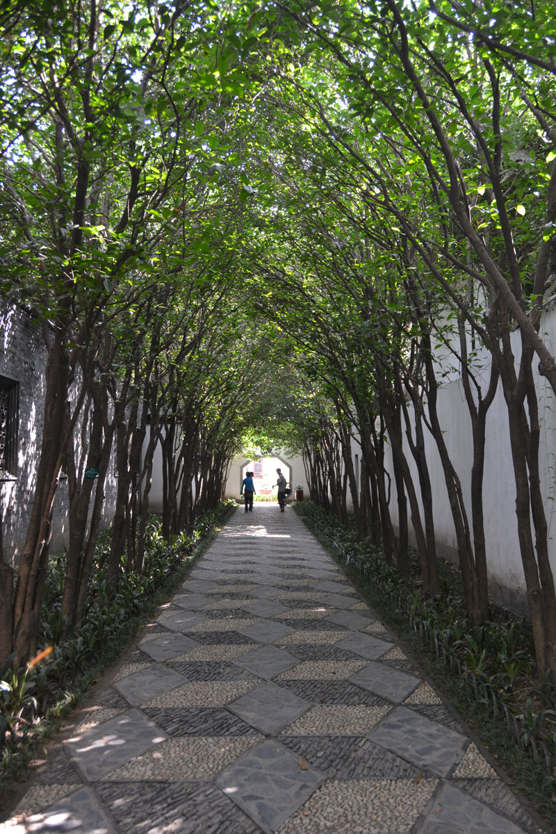 "Shahid started her last legs of cycling in Yangzhou, about 180 miles northwest of Shanghai. This tree-covered walkway connects courtyards in the city's Ge Garden. ""Walking down the main streets, one would never guess that the interiors of the old building"