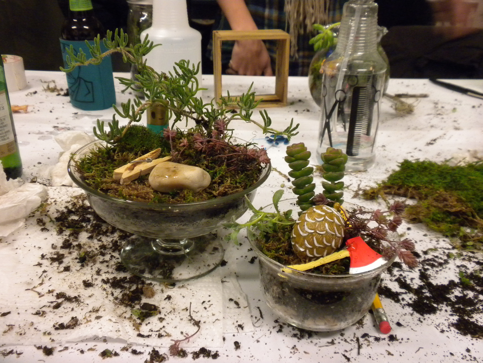 By the time the clock hit 8:30 pm, we had learned how to make a terrarium and completed some ourselves. Here are my two creations. Since the terrariums I planted are very open to the air, I will need to water them about twice a week with a water bottle se