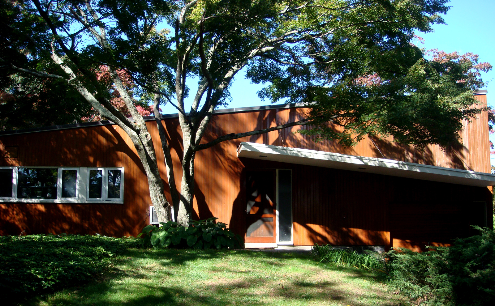The rear facade of the house showing the slope of the butterfly roof. Photo by Diana Budds.