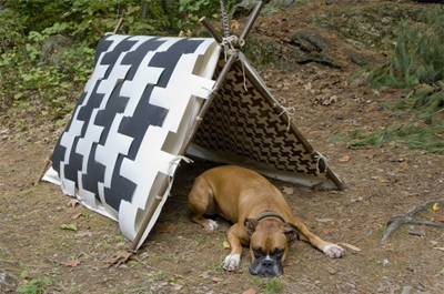 houndstooth dog tent with dog underneath it for camping