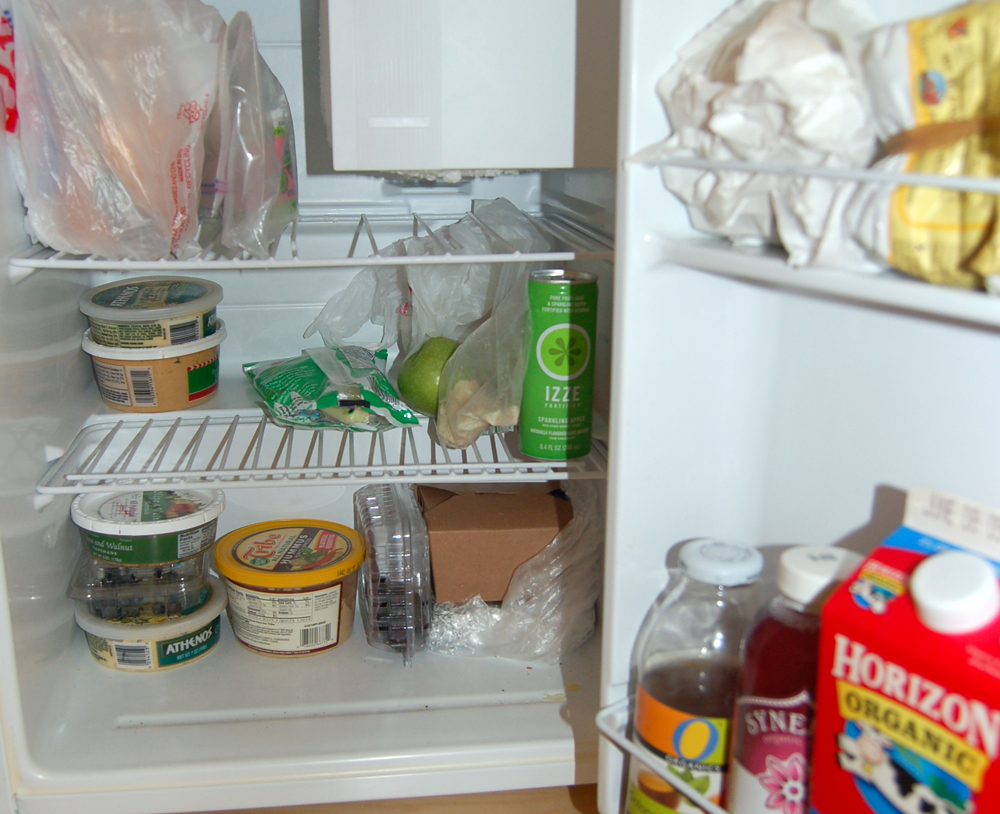 dwell fridge