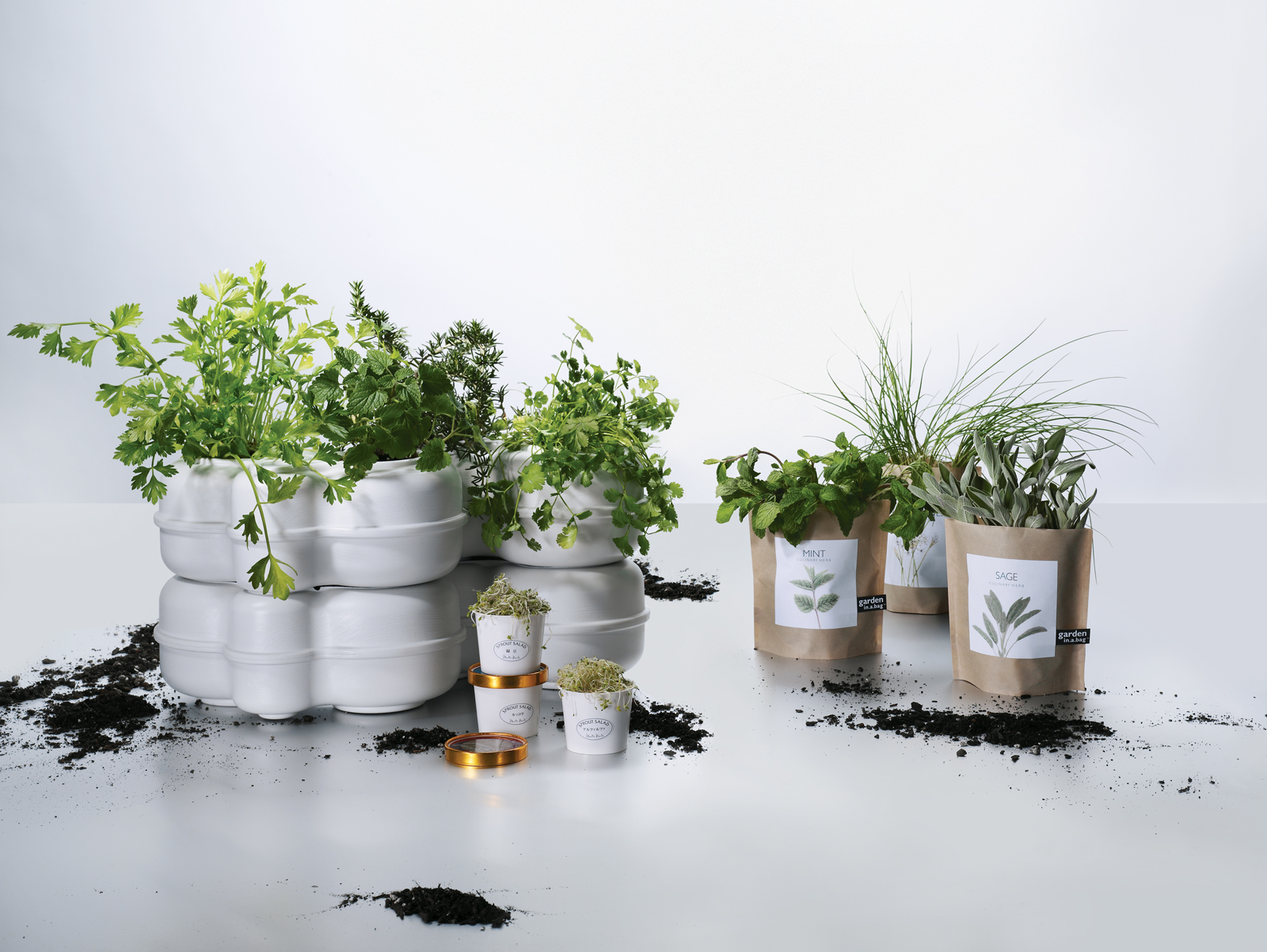 Indoor garden and herb kits