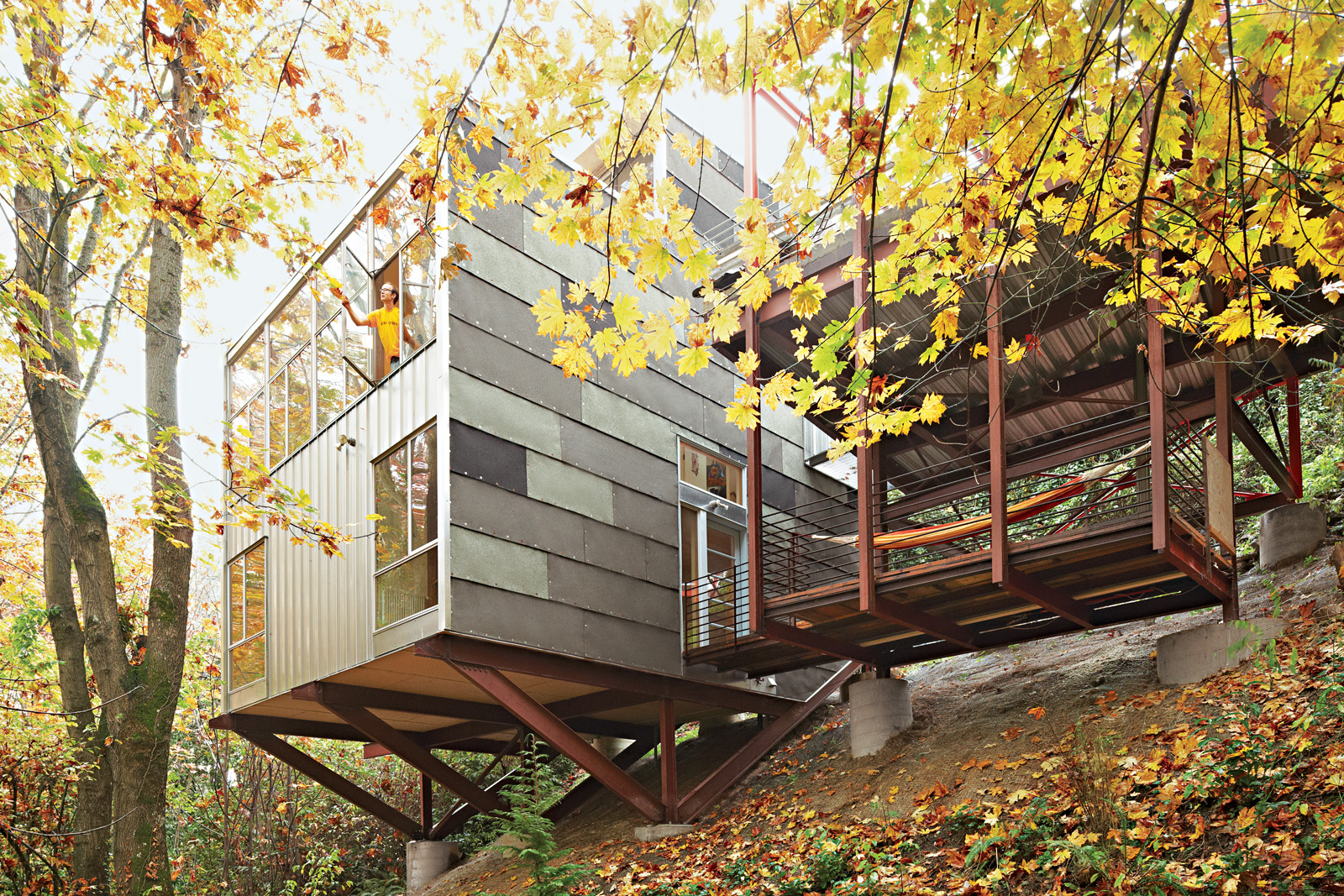 Modern Treehouse home in Seattle, Washington