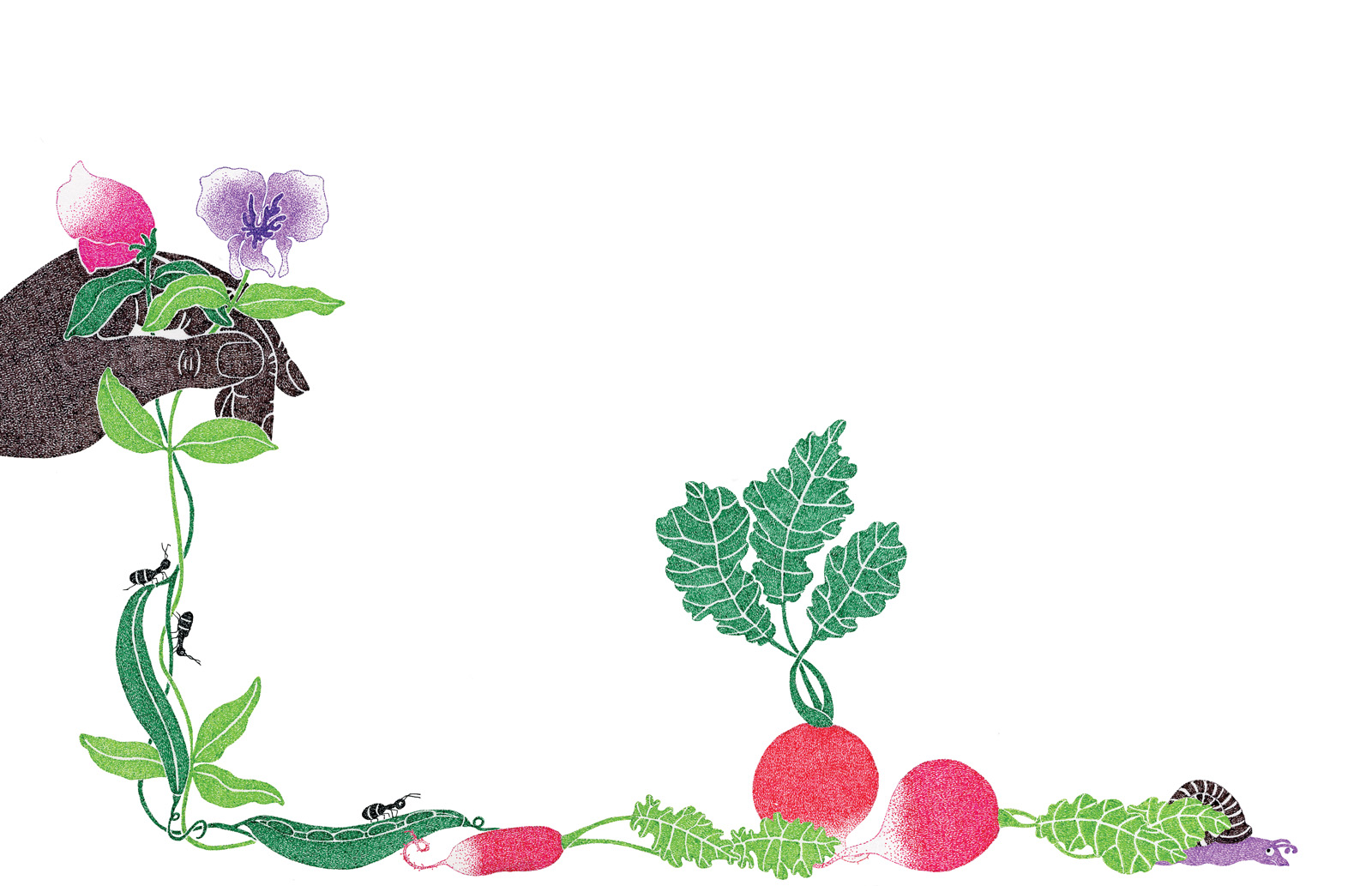 Gardening illustration by Malin Rosenqvist