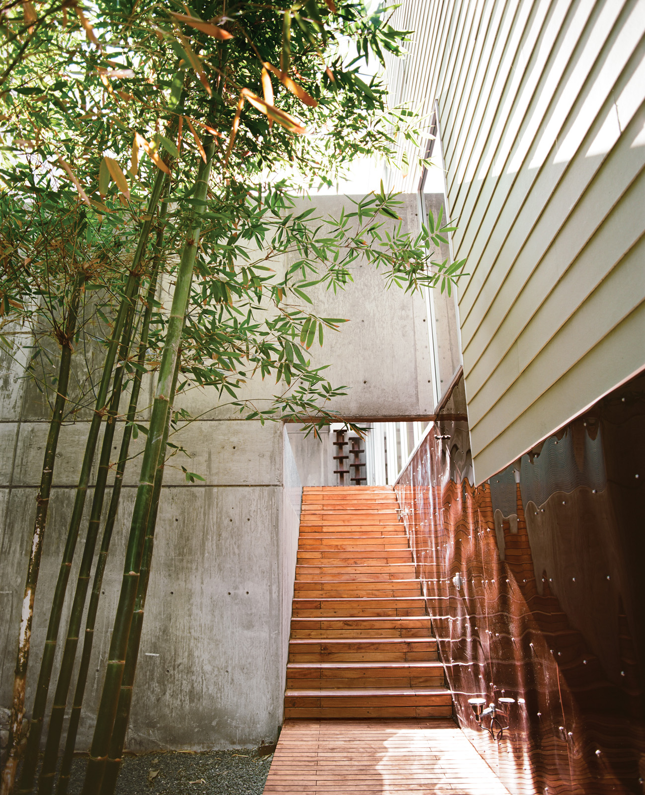 Bamboo garden by walkway leading to central courtyard