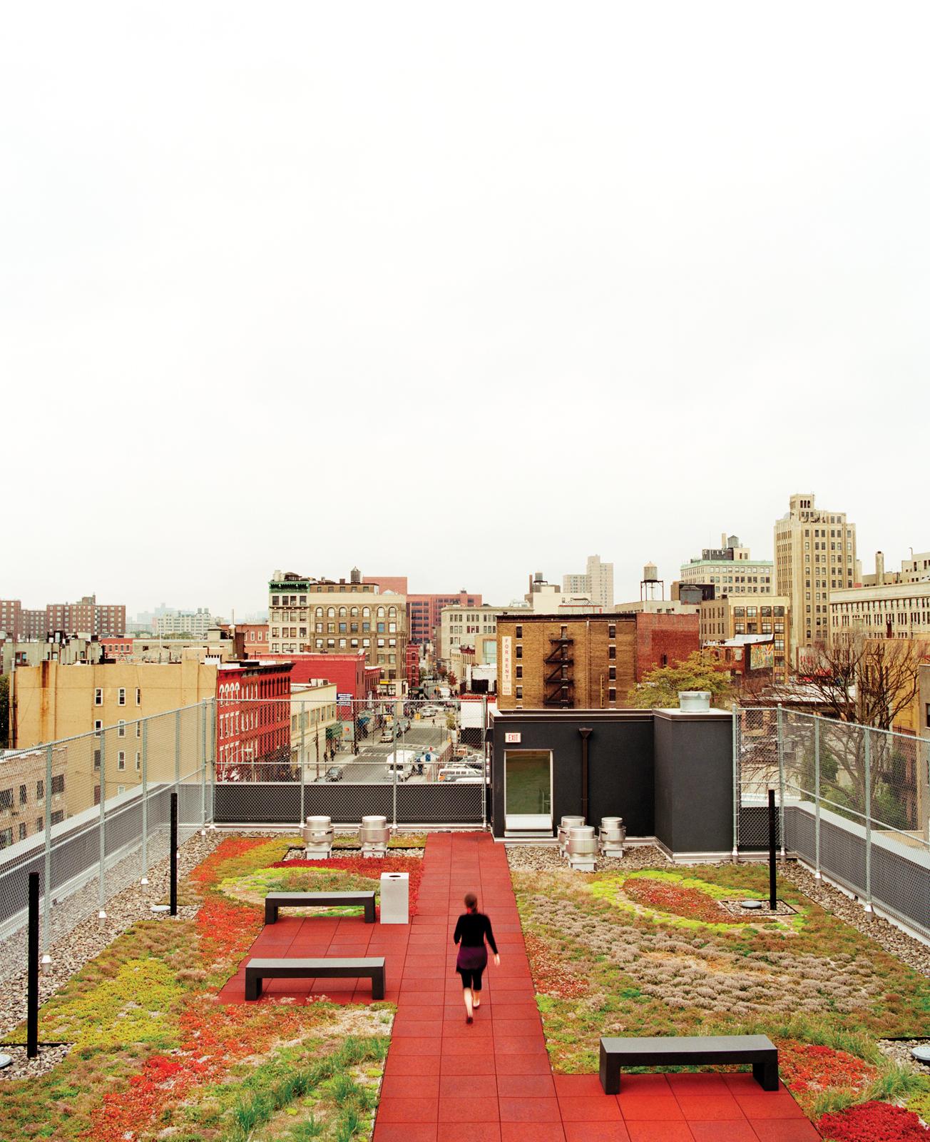 Rooftop garden park in Bronx New York