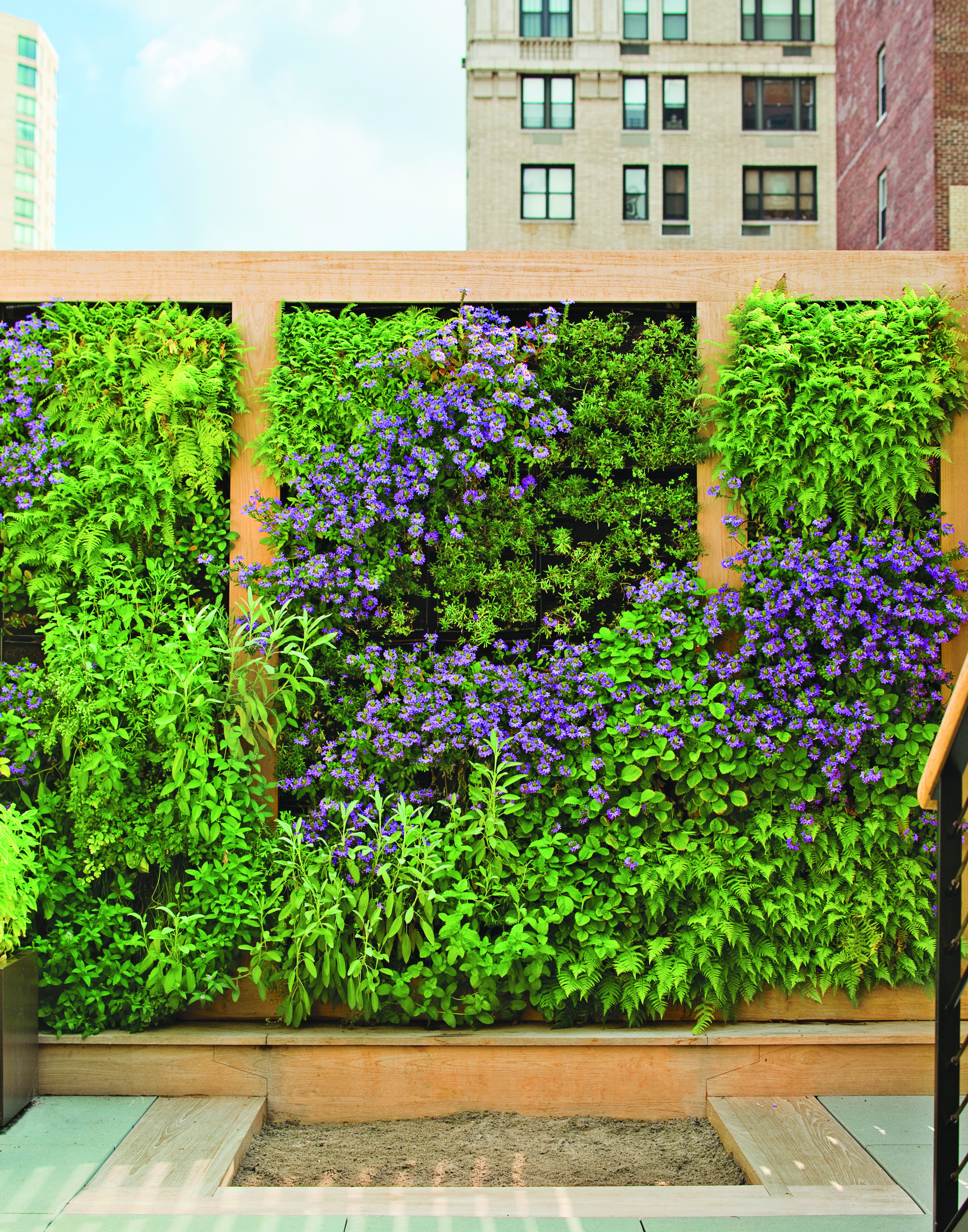 urban vertical garden