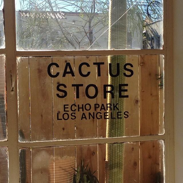 Cactus Store Los Angeles