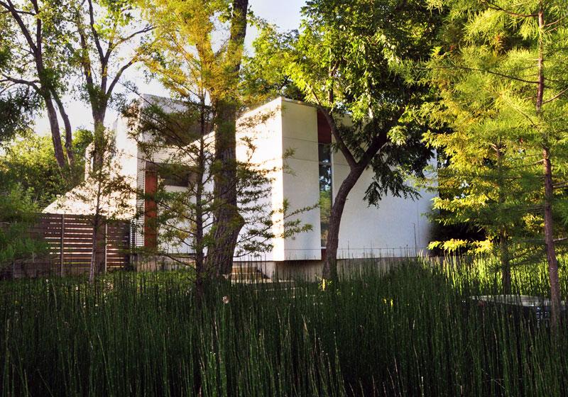 Dallas Urban Reserve garden landscape Kevin Sloan Robert Meckfessel