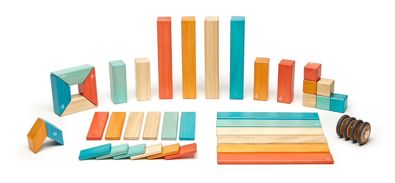 Tegu Magnetic Block Toys