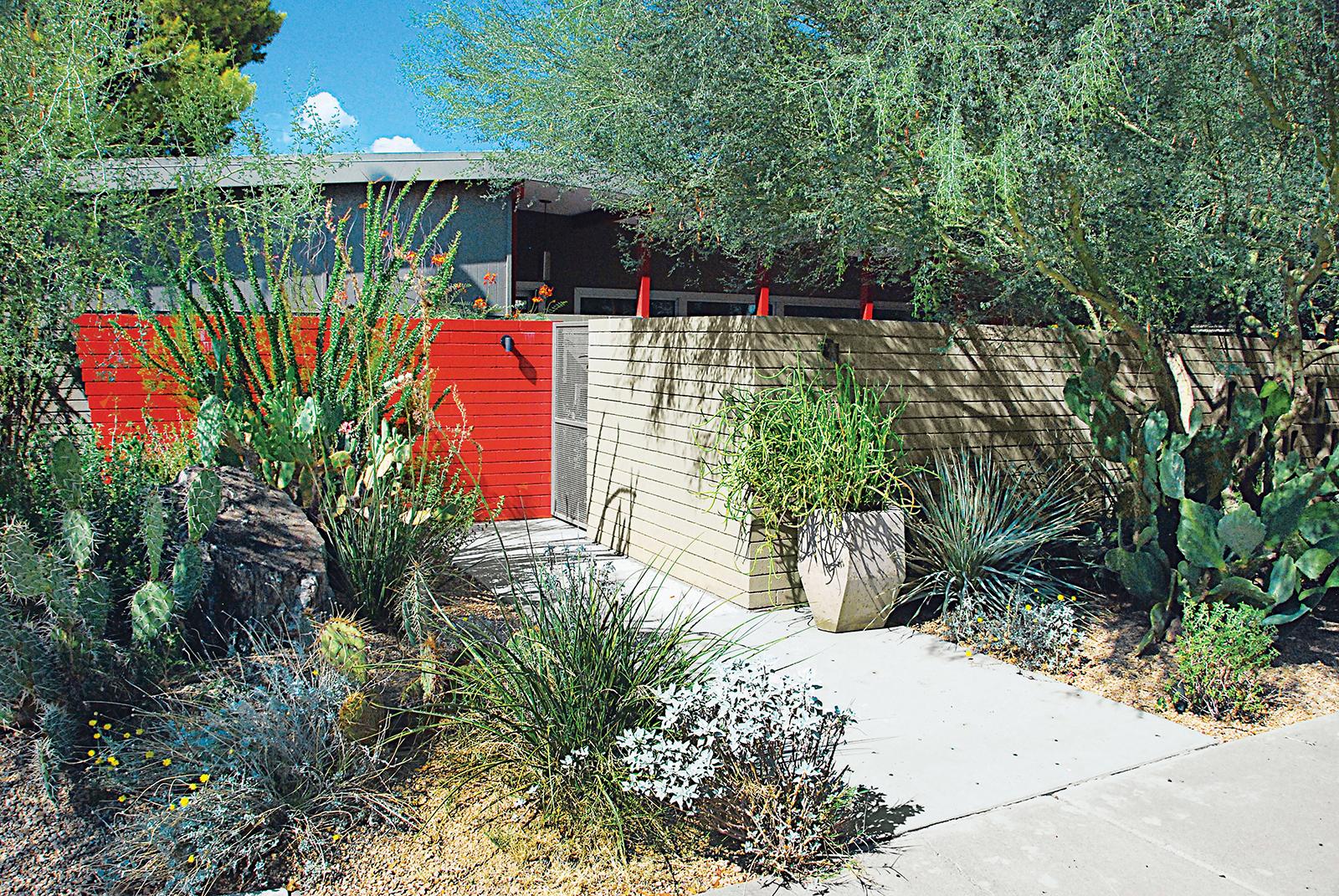 modern landscaping garden southwest walkway