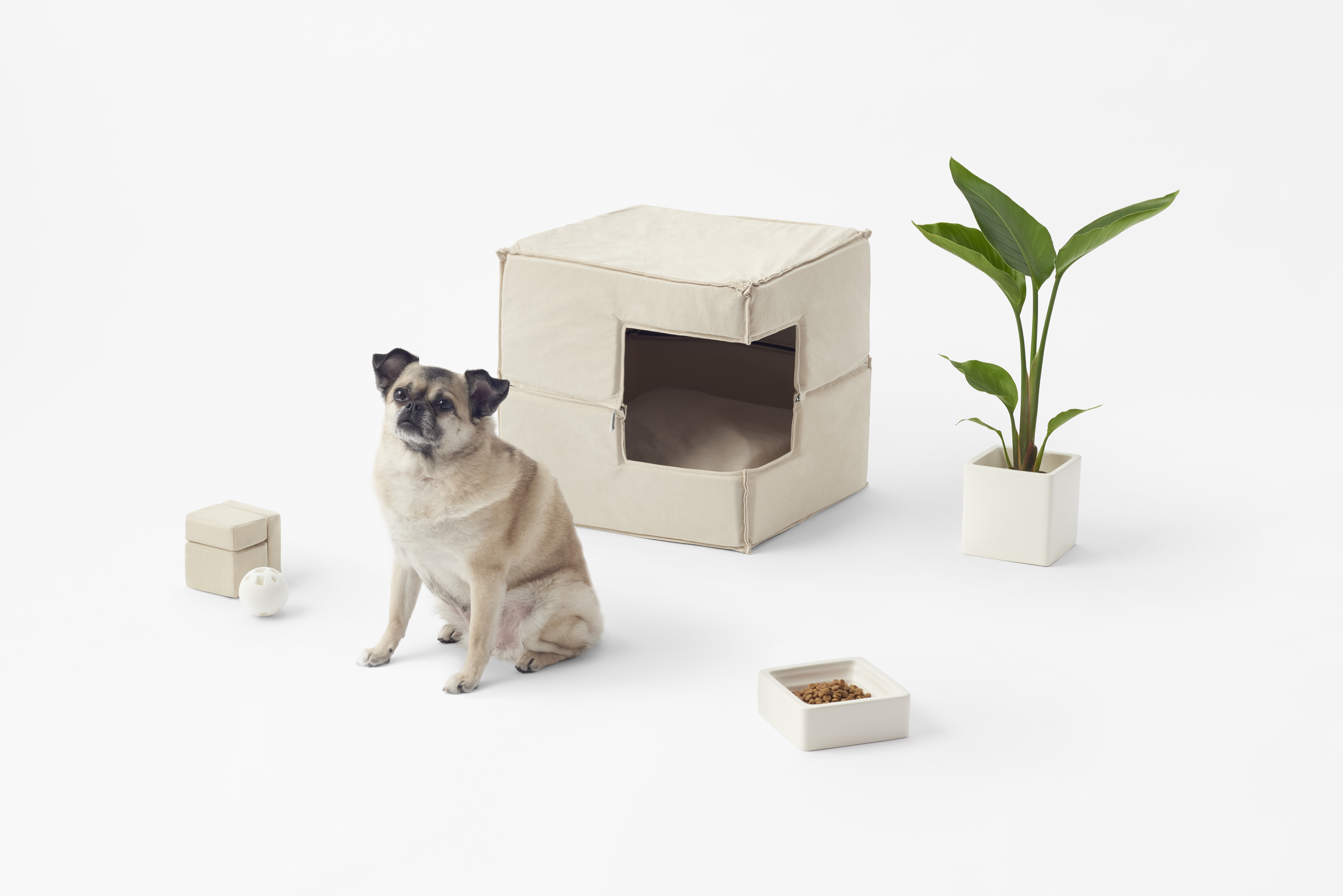 A collection of pet toys by Nendo.