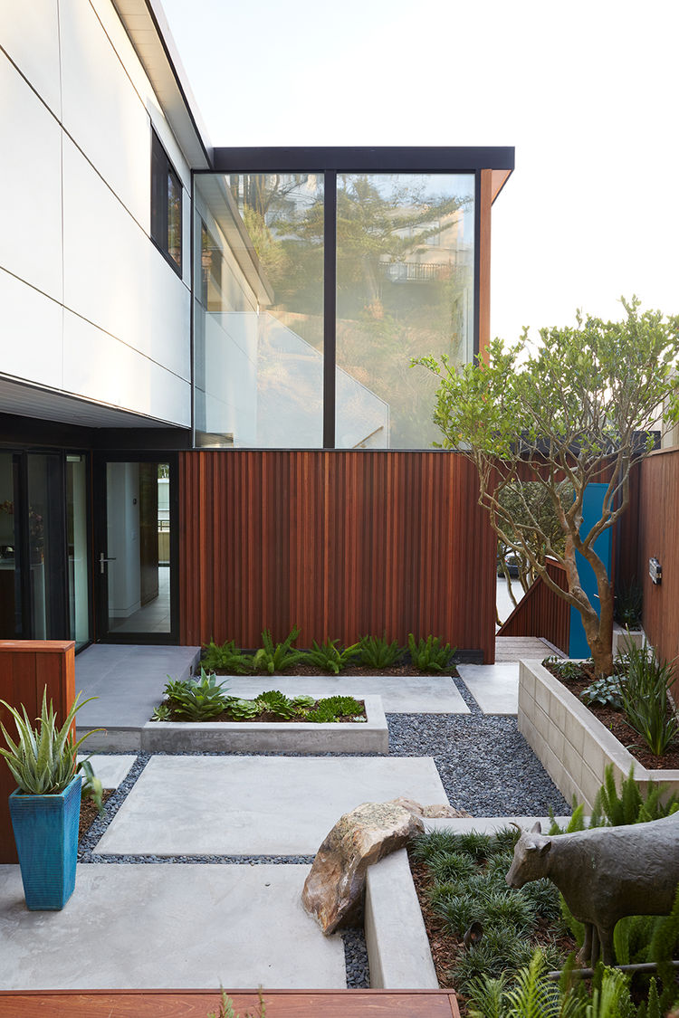 Courtyard with landscaping in a San Francisco home