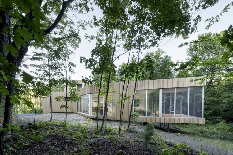 Cedar-clad lake house.