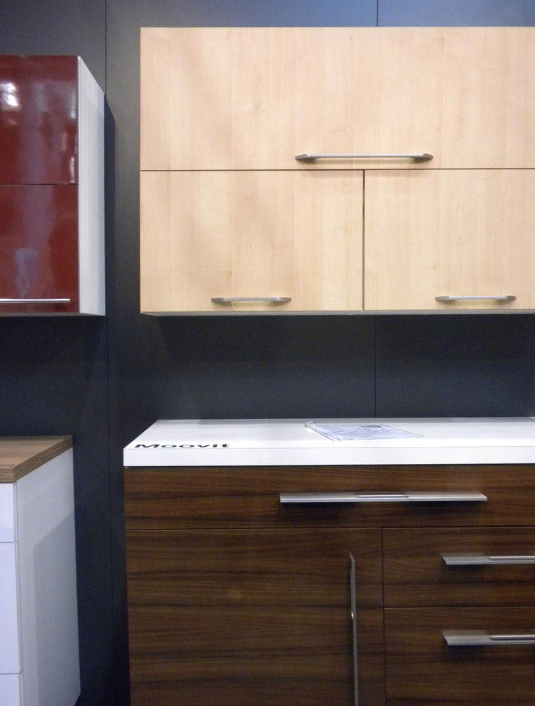"Many of the kitchens in our special <i>100 Kitchens We Love</i> issue featured products from <a href=""http://www.hafele.com/us/"">Hafele</a>. We swung through the booth to see its wares on display, such as the Moovit Double-Wall Drawer System shown here."