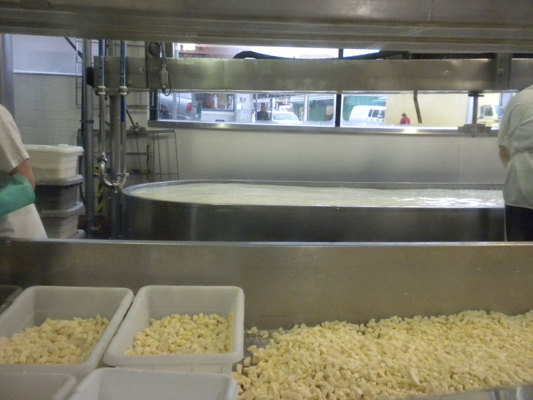 "Beecher's wins my heart, however, because it sells cheese curds, aka ""squeeky cheese,"" the key ingredient of my favorite Canadian dish: poutine. The other reason I love it, though, is that every day you can watch the cheese being made through the large co"