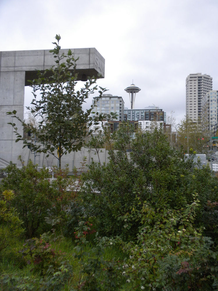 "My running destination was the Seattle Art Museum's <a href=""http://www.seattleartmuseum.org/visit/osp/"">Olympic Sculpture Park</a>, which we voted one of <a href=""http://www.dwell.com/maps/public-spaces.html"">the world's best public parks</a> in our June"