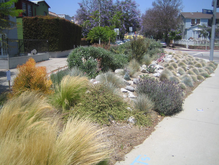 As we headed back to our cars it only took half a block to come across one of Urban Operations' projects: this pocket park on Silver Lake Blvd. It had been just a triangle of asphalt for ages before Southern and his team transformed it into a lovely lands