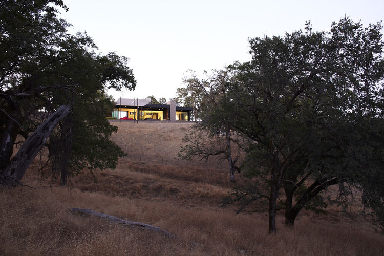 A wider view of the house, set into the Burton's oak-speckled property. Photo by Dwight Eschliman.