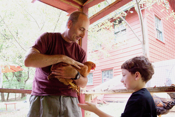 There's ample head room in the coop for people to visit and take care of the hen's needs.