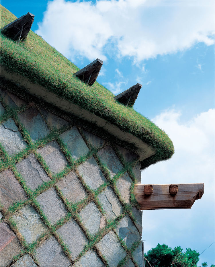 For Camellia Castle, which houses a sake brewery, Fujimori designed a grass-covered roof and a cladding comprised of grass-and-stone checkerboard.