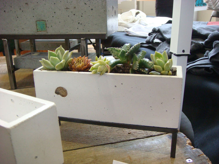 "The world's smallest succulent garden from <a href=""http://theranchdesigngroup.com/"">The Ranch Design Group</a>."