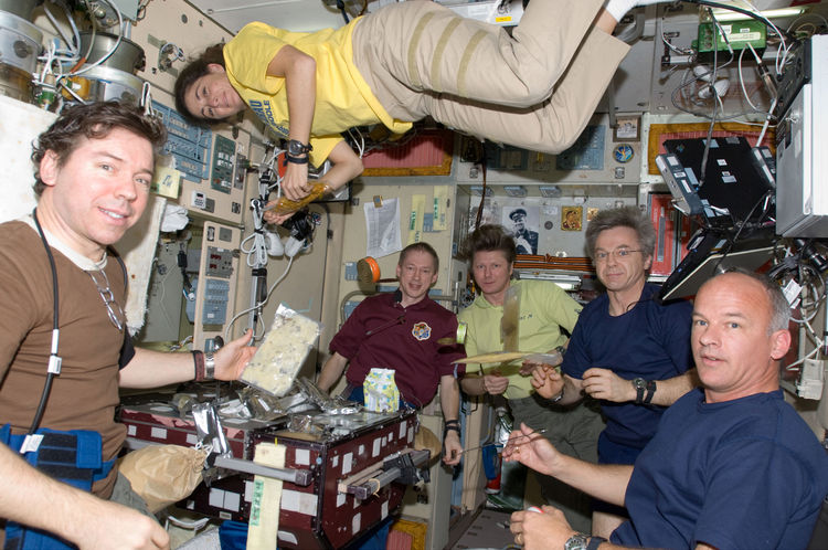 Crew members on the ISS share a meal near the galley in the Zvezda Service Module. Pictured from the left are NASA astronaut Michael Barratt, Expedition 19/20 flight engineer; European Space Agency astronaut Frank De Winne, Expedition 20 flight engineer a