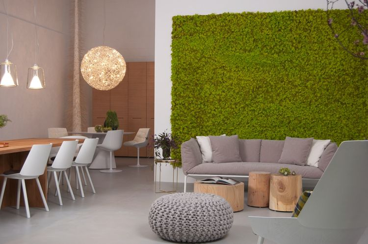 "The eight-foot-high live vertical moss wall is a bright backdrop for the Yale sofa. On the left is the Zehn table in oiled European oak by Phillip Mainzer for e15, lit by ""Lanterna"" hanging light fixtures by Oluce. The dining chairs are ""Houdini"" side cha"