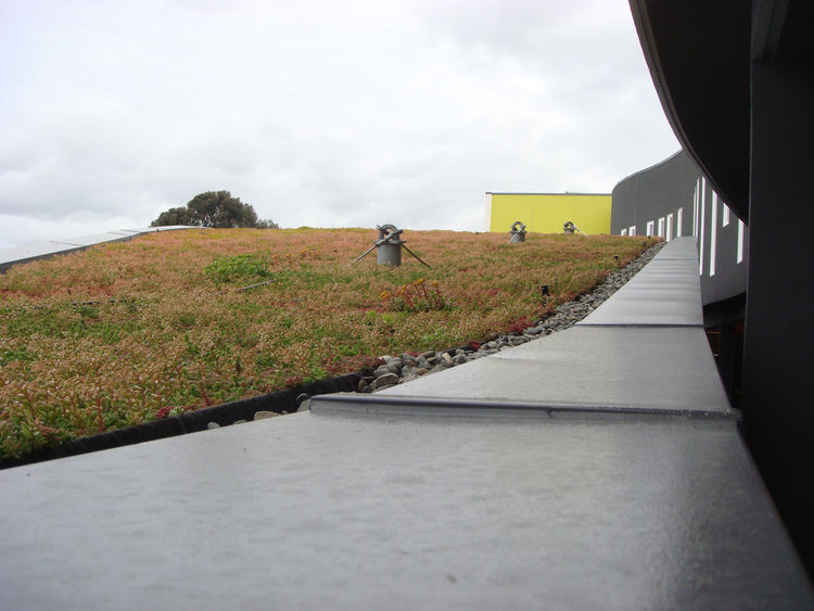 In addition to the rooftop garden, a traditional green roof caps the apartment building.