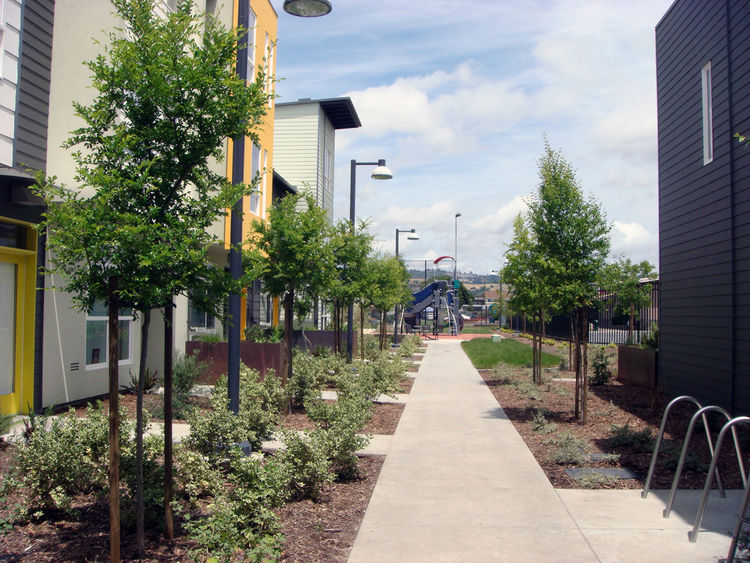 Tassafaronga Village is anchored by a large public plaza and many of the townhouses open to pocket parks and semi-private spaces that help facilitate community gatherings. At the end of this pedestrian path is a jungle gym for children in the neighborhood