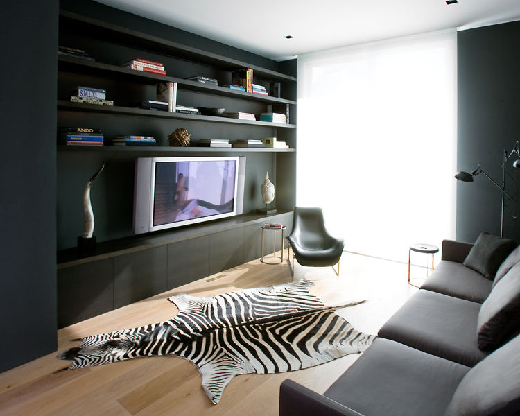 Modern San Francisco media room