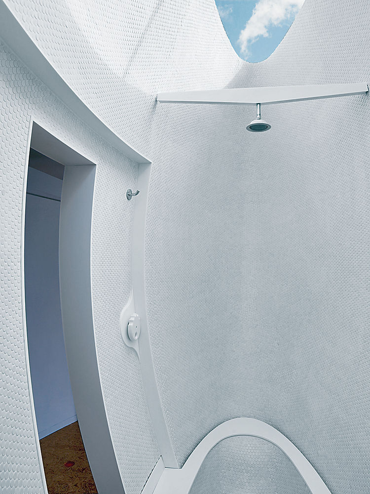 The curving exterior of the podlike bath and shower cuts an elegant form at the other end of the room.