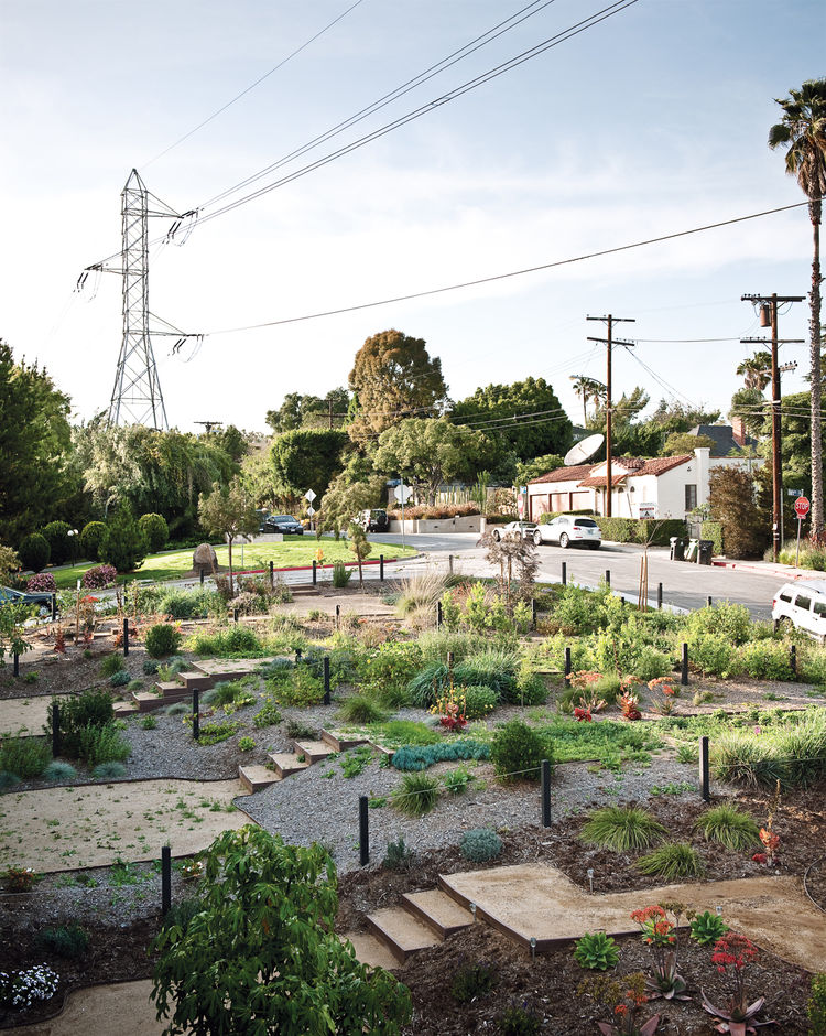 Residents have leased and transformed adjacent vacant land owned by the Department of Water and Power into a community garden.