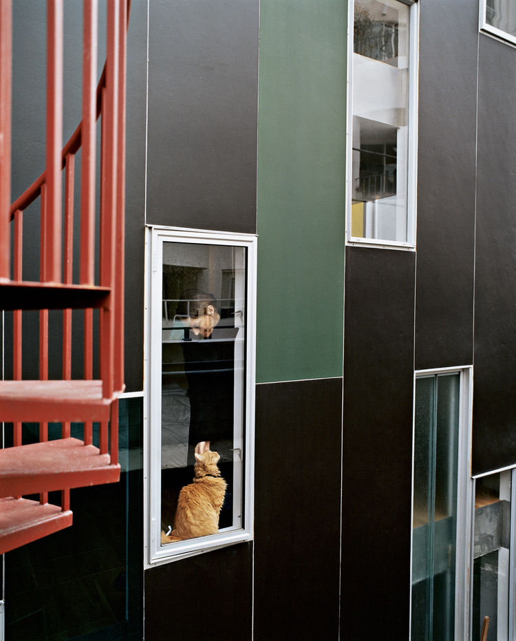 Rich, dark concrete panels and colorfully dispersed windows wrap the exterior in varying permutations.