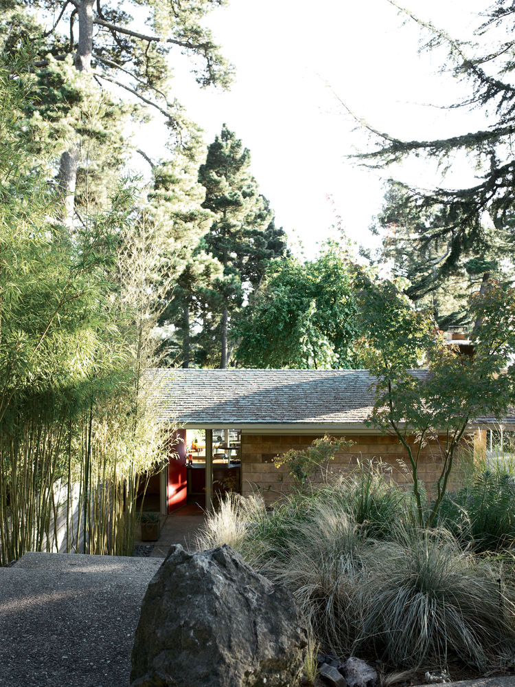 A stony walk and a line of bamboo, original to the property, direct visitors to the entryway of the Pfeiffers' modest 1956 slice of heaven.