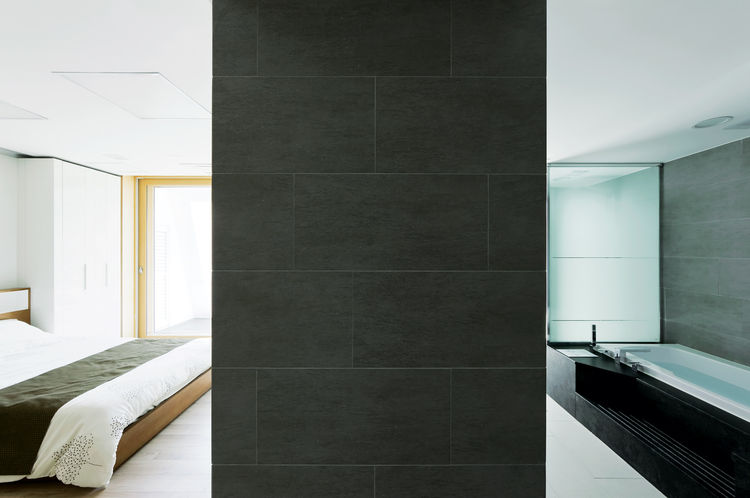 Minimalist bedroom and bath divider