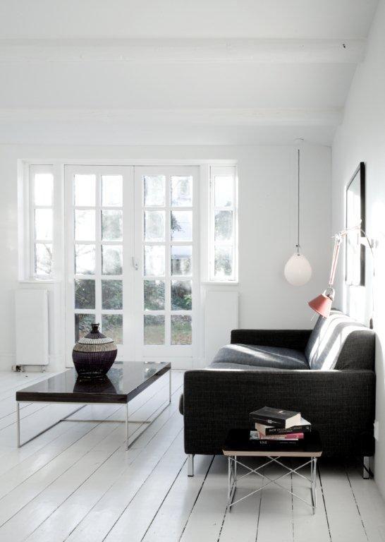 Modern minimalist rustic living room