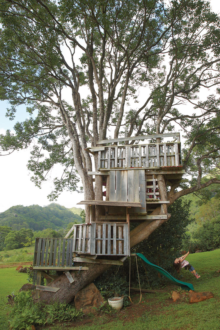 Multi-floored treehouse in Kauai