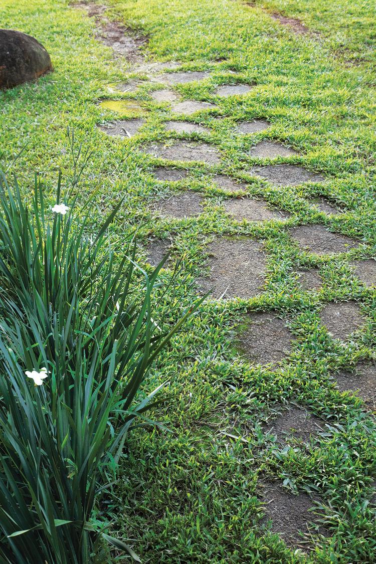 Outdoor garden asphalt walkway