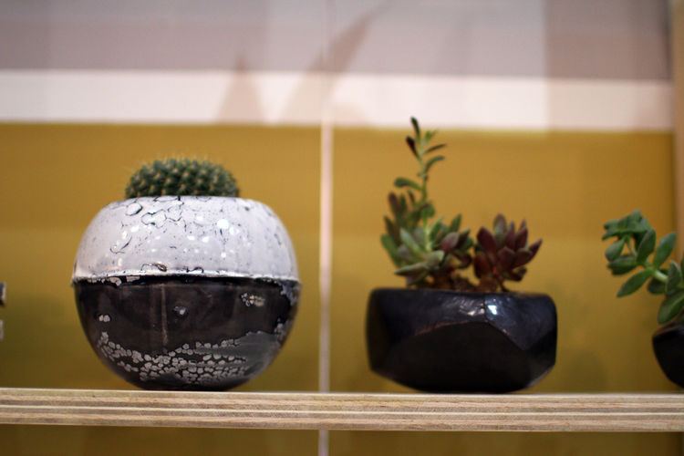 BKB Ceramics planter for cacti and succulents