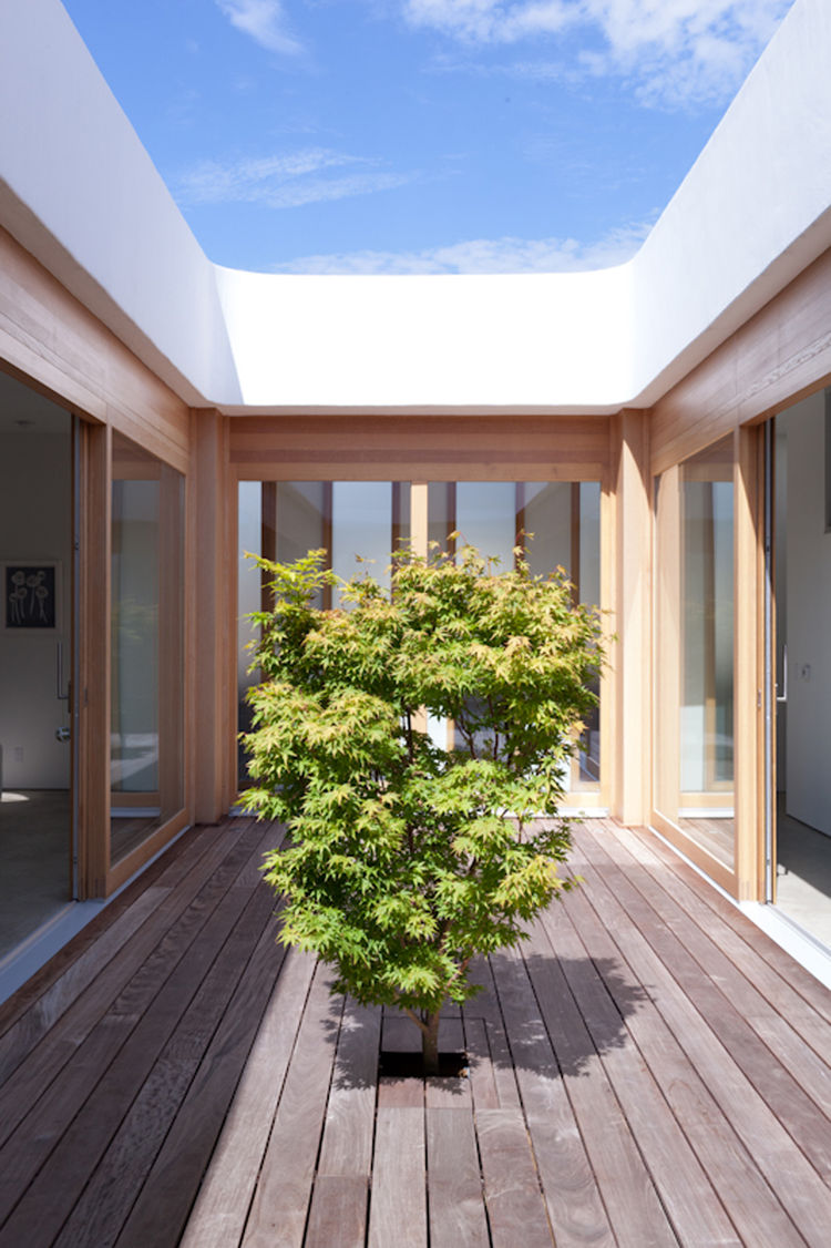 Wooden courtyard with maple tree