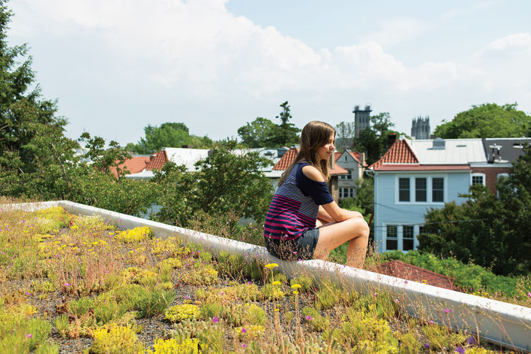 Green roof on modern house in Washington, DC