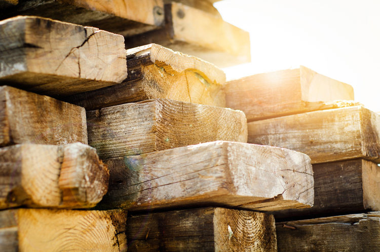 Blocks of salvaged wood at EndGrain Studio