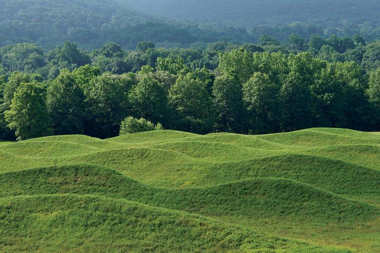 Maya Lin's 2009 earthwork.