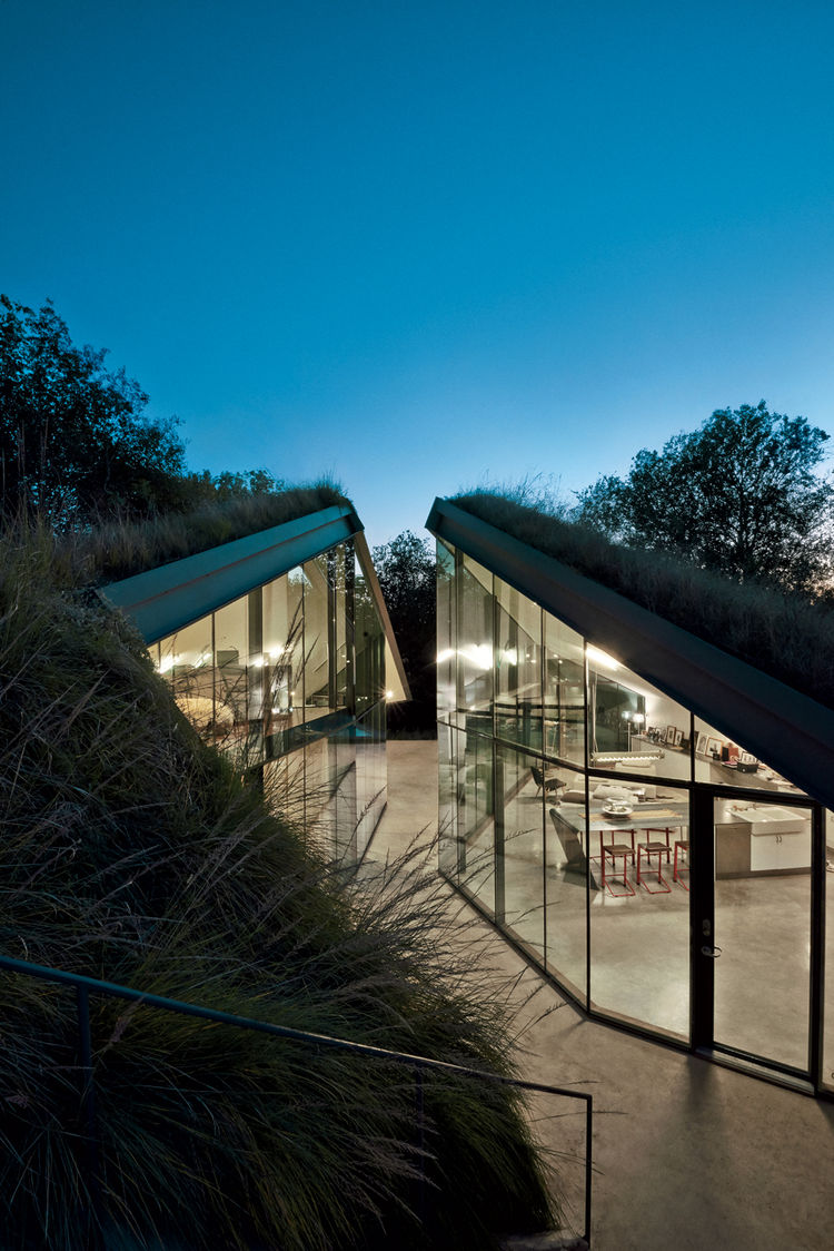 Modern glass house in Texas with living roof