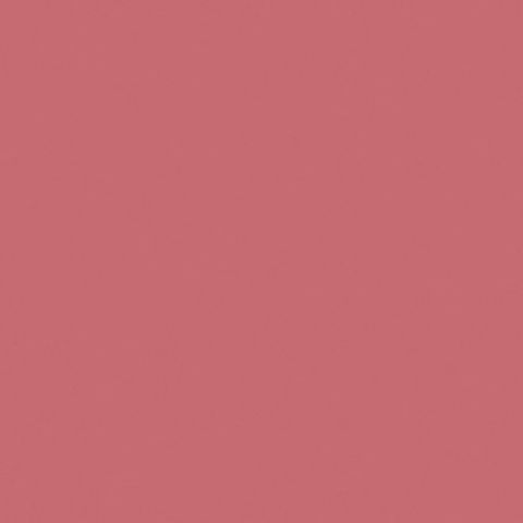 Pink Salmon by Glidden