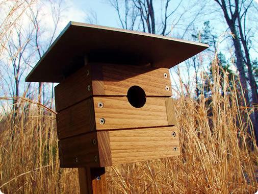 Modern wooden birdhouse