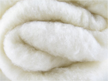 Softbatts Sheep's Wool Insulation by Bellwether Materials