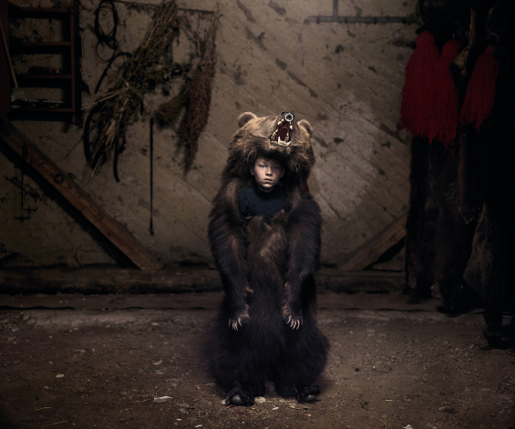 photography by tamas dezco