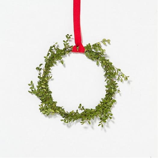 Boxwood Circlet Wreath from Terrain